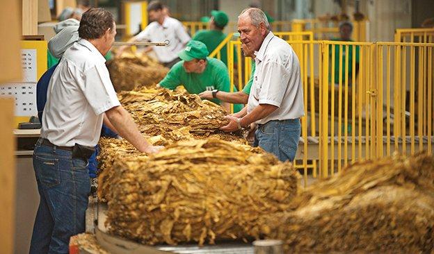 صادرات تنباکو