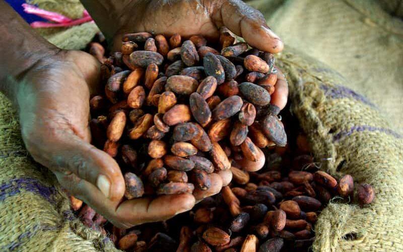 واردات شکلات