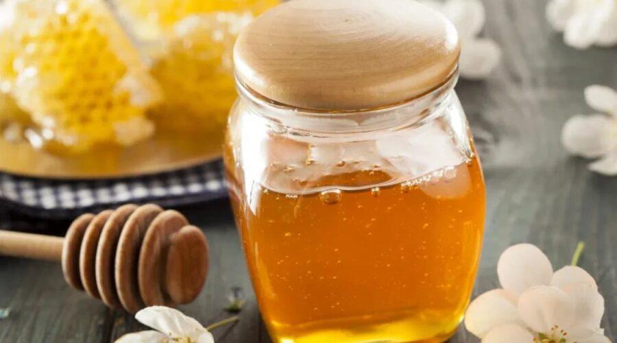 صادرات عسل به اروپا